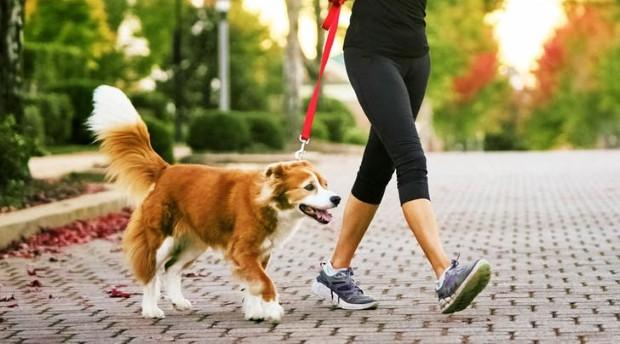 Όλα όσα θα φέρουν στη ζωή σου μόλις λίγα λεπτά περπάτημα