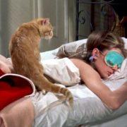 Αυτοί είναι οι πέντε μοναδικοί τρόποι να κάνεις το πρωινό ξύπνημα πιο εύκολο