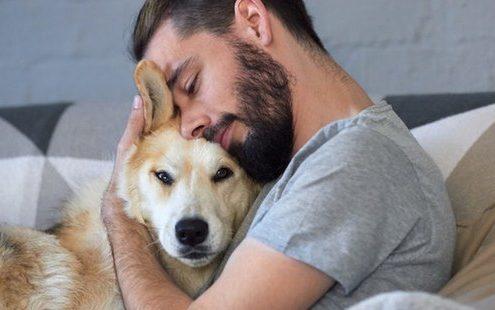 Οι σκύλοι μισούν στ'αλήθεια τις αγκαλιές;