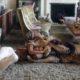 Πολύ πριν τον Tiger King είχαμε και μία Tiger Queen, την Tippi Hedren