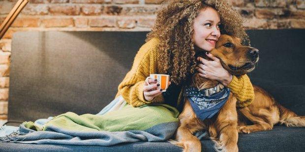 Πώς να συστήσεις το κατοικίδιό σου στον σύντροφό σου