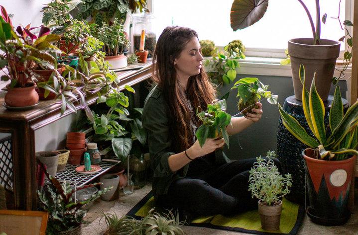 Συγγνώμη αλλά τα φυτά σου δεν καθαρίζουν την ατμόσφαιρα στο σπίτι σου