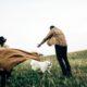 Τα 5 κομβικά στάδια μιας σχέσης