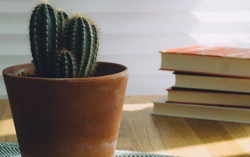 Το καλοκαίρι είναι η ευκαιρία να διαβάσεις τα βιβλία που άφησες στη μέση