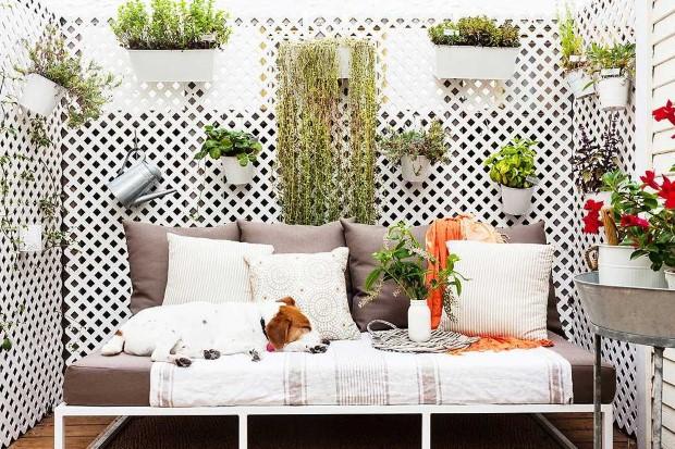 Τρόποι να φροντίσεις τα φυτά στο μπαλκόνι σου χωρίς να γίνεις guru της κηπουρικής