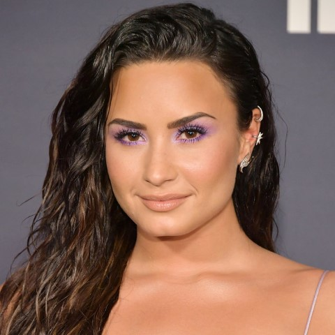 LOS ANGELES, CA - OCTOBER 23: Demi Lovato attends 3rd Annual InStyle Awards at The Getty Center on October 23, 2017 in Los Angeles, California. (Photo by Neilson Barnard/Getty Images)