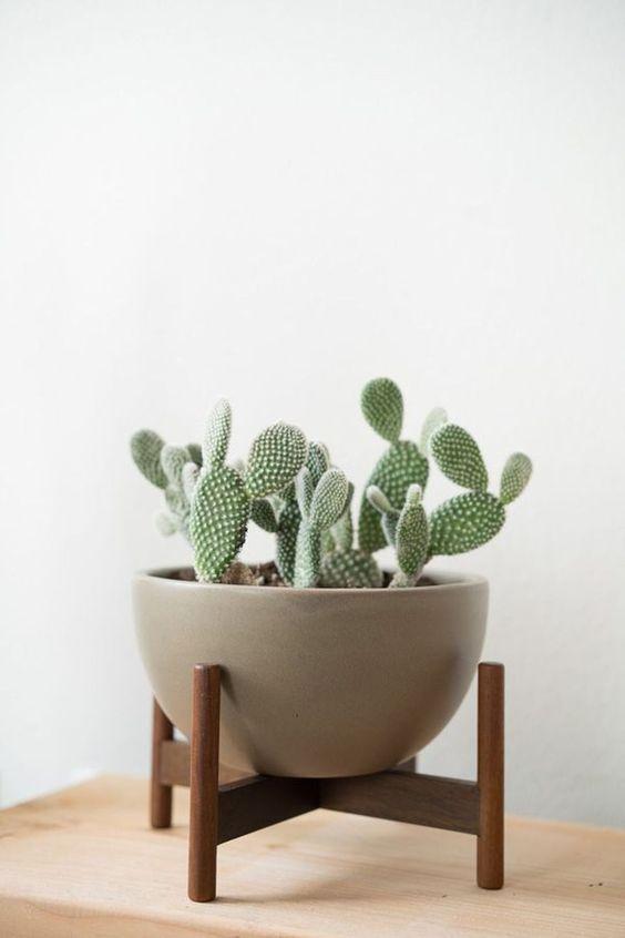 Image: amzhouse.com