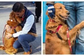 Η Louboutina ειναι το σκυλι που μοιραζει αγκαλιες