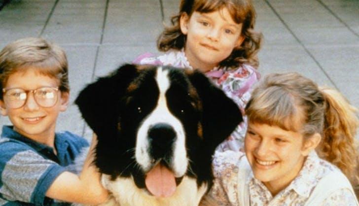 10-εξαιρετικές-σκυλοταινίες-για-να-δείτε-αυτή-την-εορταστική-περίοδο