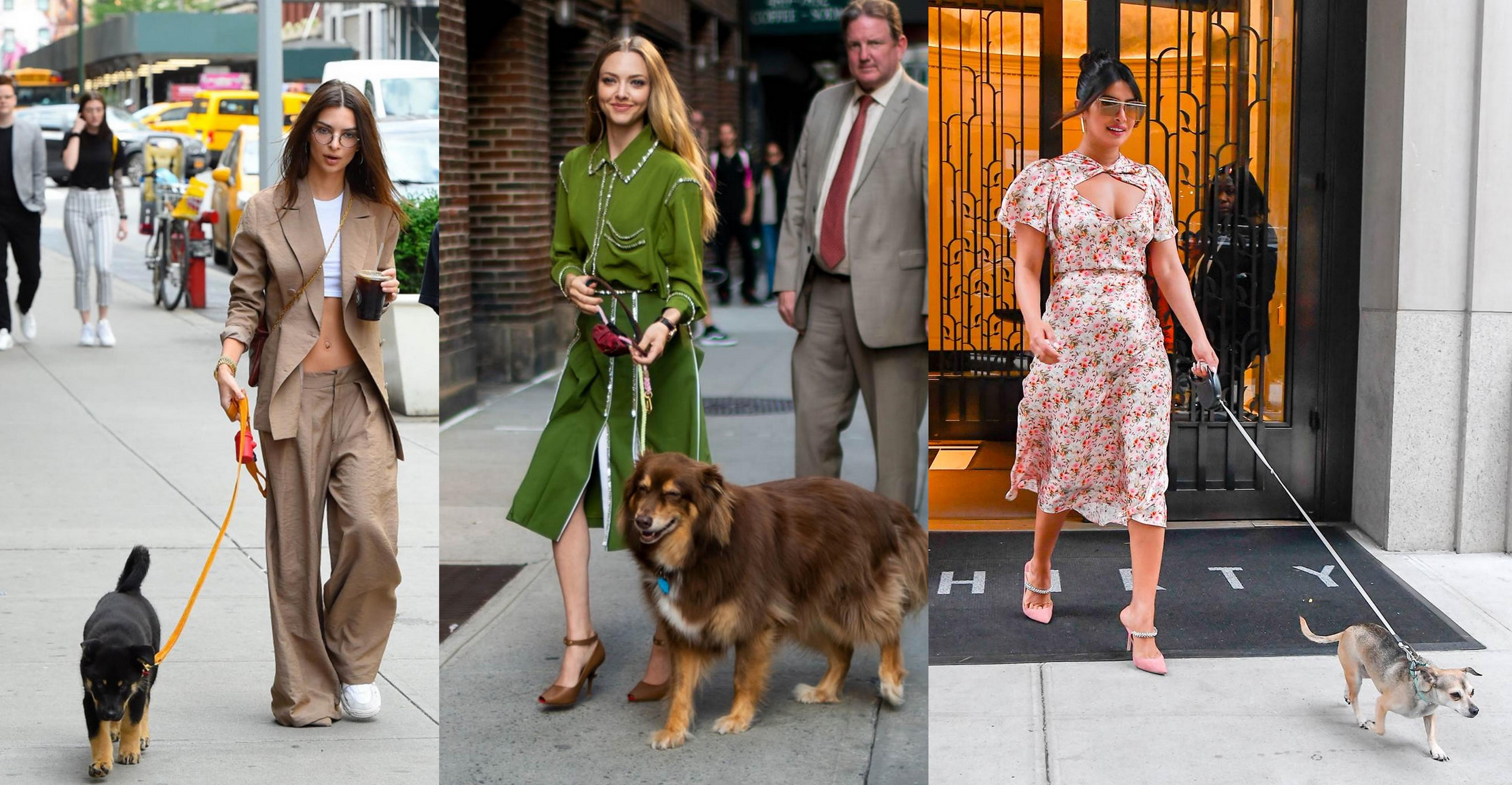 12 φορές που οι celebrities έκαναν τη βόλτα με τον σκύλο τρομακτικά in style