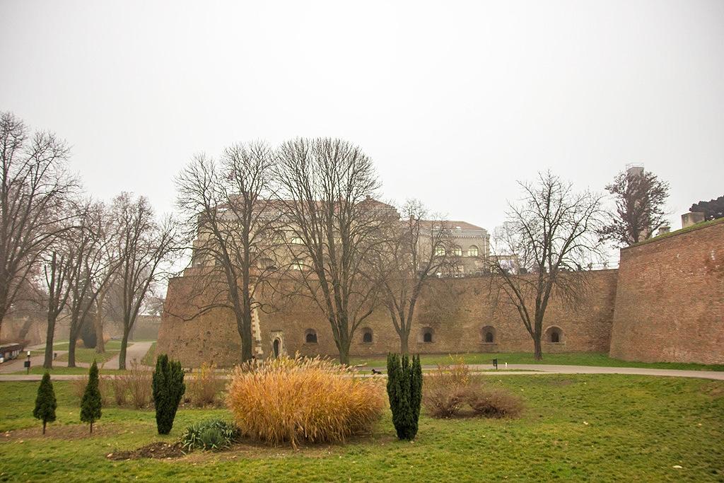 Kalemegdan Walls