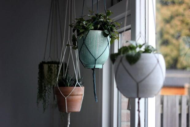 5 φυτά για κρεμαστές γλάστρες που δεν ήξερες ότι χρειάζεται το σπίτι σου
