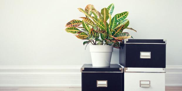 8 ερωτήσεις που θα σε βοηθήσουν να κάνεις declutter