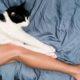 Τα επιστημονικά αποδεδειγμένα οφέλη του να αγαπάς τις γάτεςΤα επιστημονικά αποδεδειγμένα οφέλη του να αγαπάς τις γάτες