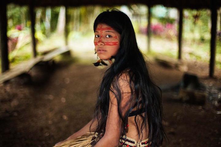 Amazon, Rainforest