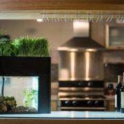 Aquaponic Gardening: το νέο trend στην κηπουρική