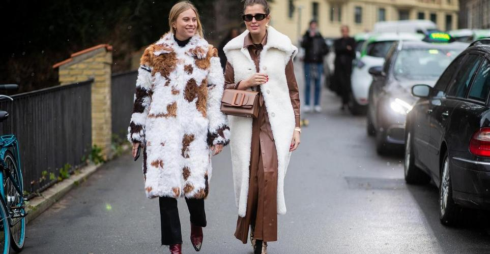 Brown Cow Is The New Leopard Print