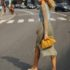 10 φορέματα που θα επικρατήσουν αυτή την άνοιξη