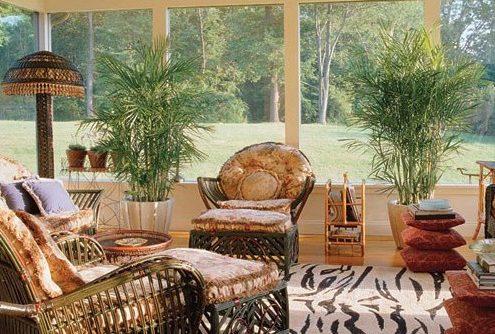 5 ιδέες για να διακοσμήσεις το χώρο σου με φυτά
