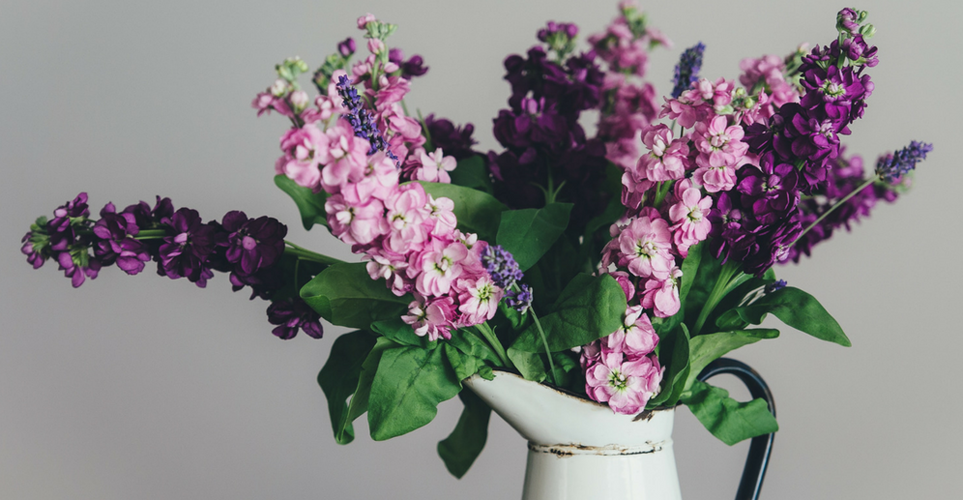 four-reasons-to-add-lavender-to-your-nightly-routine-featured-copy