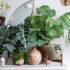 Οι καταπράσινοι Urban Jungle Bloggers μας έχουν ενθουσιάσει