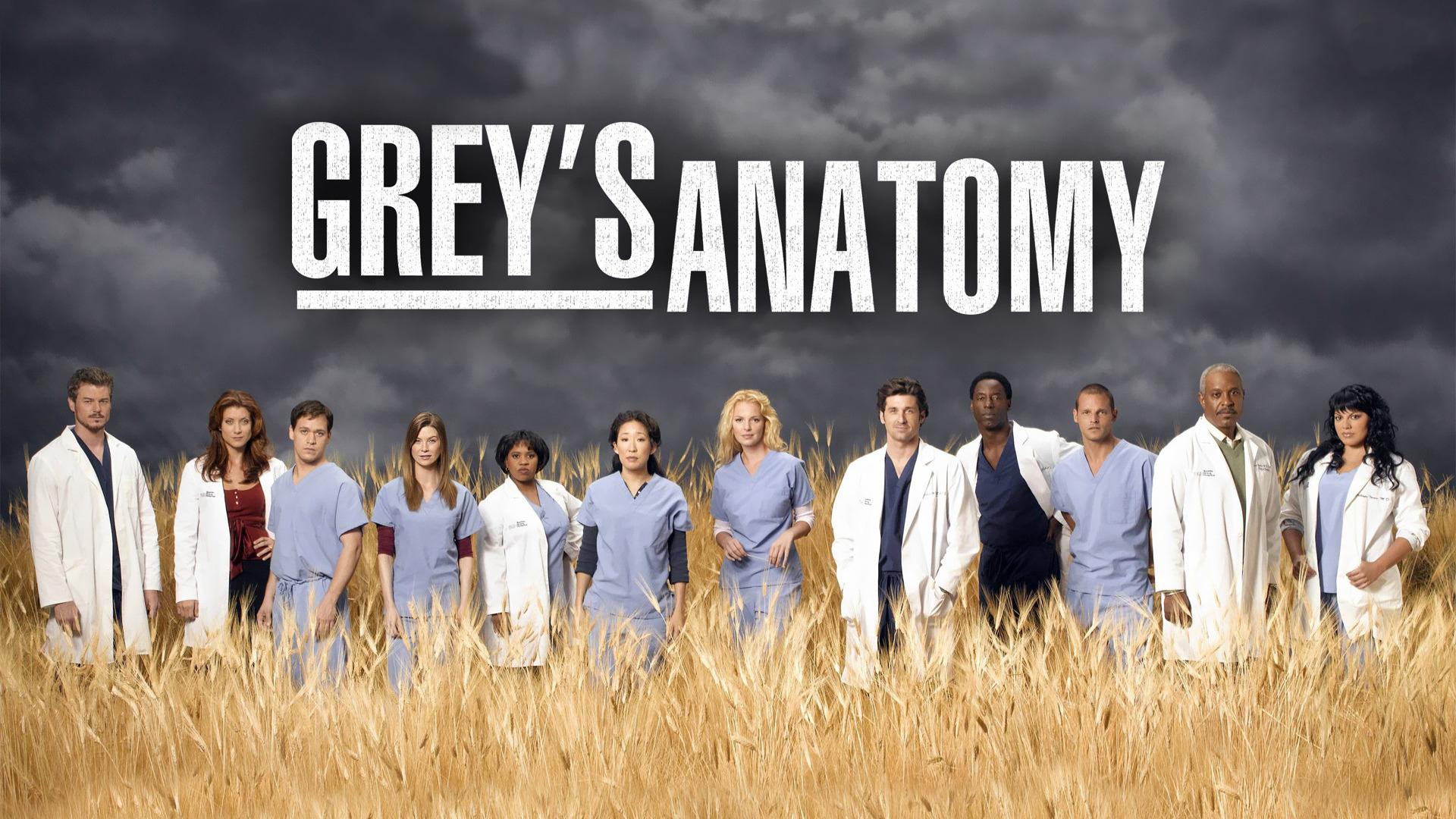 Greys Anatomy savoir ville