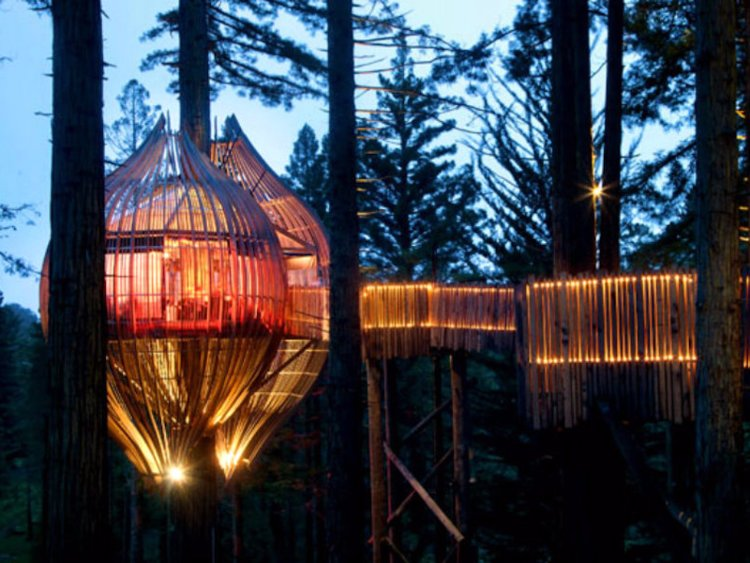 the-redwoods-treehouse