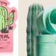 Ήρθε η ώρα να γίνεις και εσύ cactus lover και όχι μόνο στη διακόσμηση
