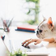 Τρόποι που τα social media μπορούν να σε βοηθήσουν να βρεις την ιδανική δουλειά