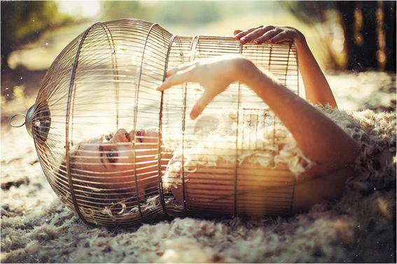 ilovegreeninspiration_girl-cage-feathers-favim-com-504918