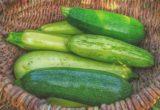 6 καλοκαιρινές ιδέες για να αξιοποιήσεις τα κολοκυθάκια που ξέμειναν στο ψυγείο σου