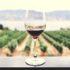 6 βασικές γνώσεις που πρέπει να έχεις για το κρασί