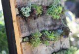 Ο DIY μικρός κρεμαστός κήπος που θα φτιάξεις ανακυκλώνοντας μία παλέτα