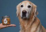 Η Peteat αγαπά τους σκύλους και για αυτό τους μαγειρεύει φρέσκο φαγητό