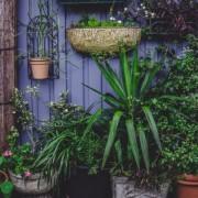 Εύκολοι τρόποι να αναβαθμίσεις τον κήπο σου