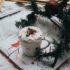Ποια ζώδια μπαίνουν αμέσως στο χριστουγεννιάτικο κλίμα