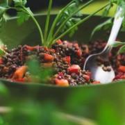 Πηγές πρωτεΐνης για χορτοφάγους