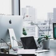 Φυτά χωρίς μεγάλες απαιτήσεις για το γραφείο σου