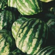 4 λόγοι για να εντάξεις το καρπούζι στην beauty ρουτίνα σου