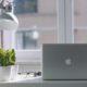 Ο σωστός τρόπος να περιποιηθείς τα φυτά σου τον χειμώνα