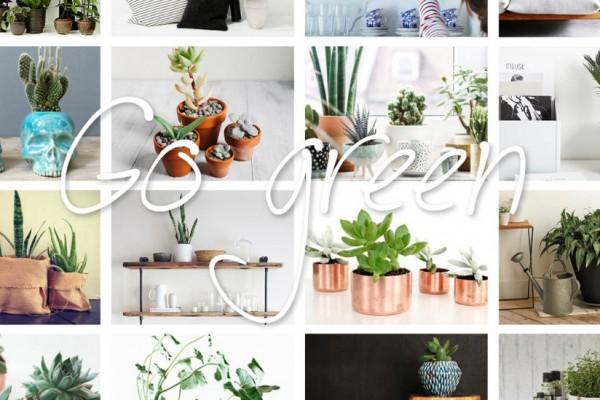 plantscoversocial