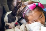 Παιδιά που μεγαλώνουν με σκύλο αναπτύσσουν καλύτερη συμπεριφορά λέει νέα έρευνα