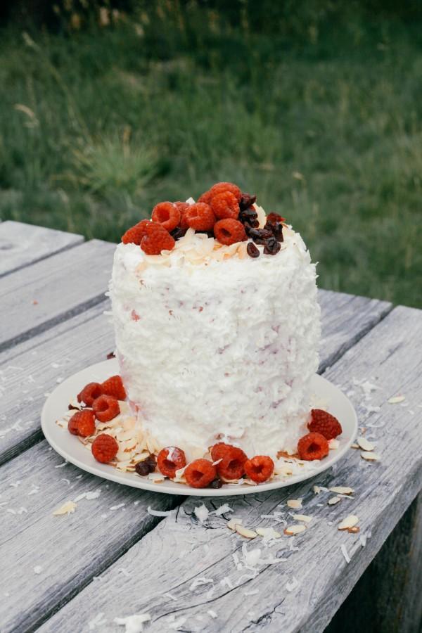 watermelon-cake-savoir ville 8