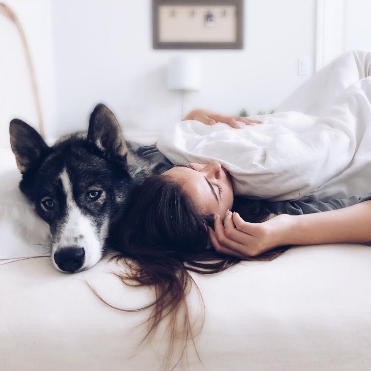 4 συμπεριφορές που ίσως μπερδεύουν τον σκύλο σου
